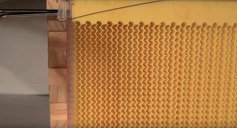 Košnica sa slavinom za točenje meda: Da li je česma za med zaista ostvarenje pčelarskog sna?