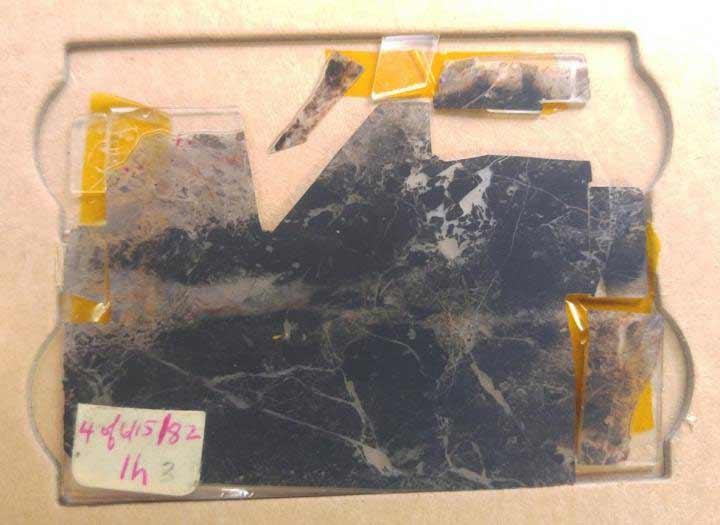 Život je postojo i pre 3.5 milijarde godina: Najstariji fosil na Zemlji otkriva da su prva bića živela bez kiseonika